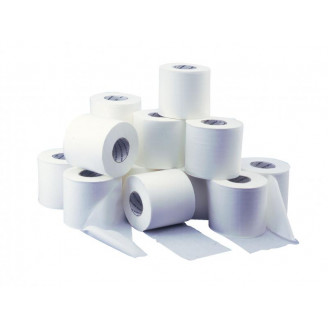 Papier hygiénique bobine 500 formats - carton 36 bobines